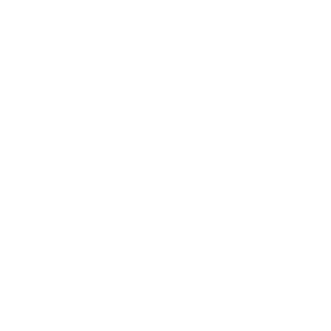 2012_Altivon_Logo_White-Large